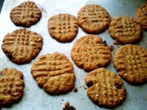 peanut butter cookie no flour