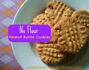 Peanut Butter Cookies No Flour