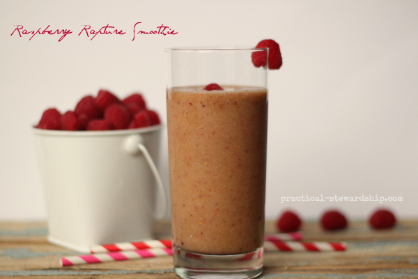 Raspberry Rapture Smoothie