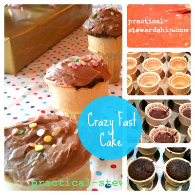 Crazy Cake Collage, Egg-Free, Dairy-Free