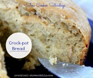 Crock-pot (Sourdough) Bread