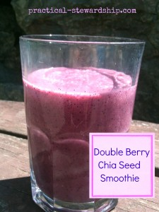 Double Berry Chia Seed Smoothie