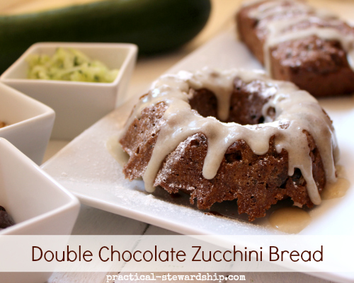 Double Chocolate Zucchini Bundt Cake