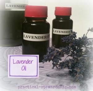 Lavender Oil Bottled @ practical-stewardship.com