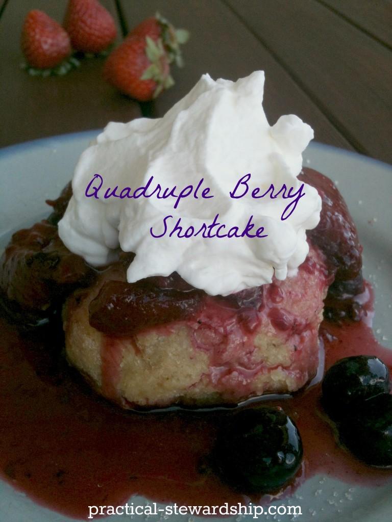 Quadruple Berry Shortcake