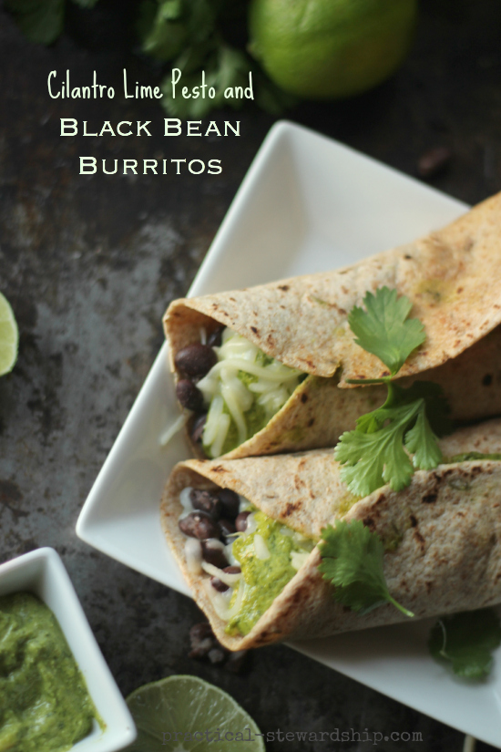 Cilantro Lime Pesto and Black Bean Burrito with Cilantro