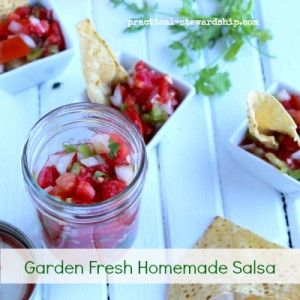 Garden Fresh Homemade Salsa