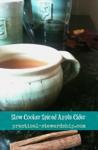 Spiced Apple Cider @ practical-stewardship.com