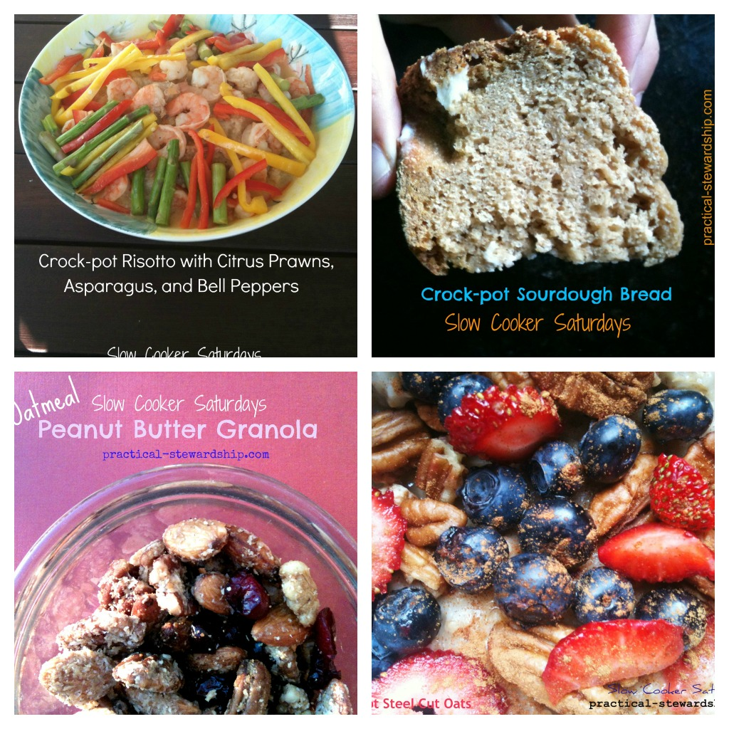 Top 12 Unusual Crock-pot Recipes @ Practical-stewardship