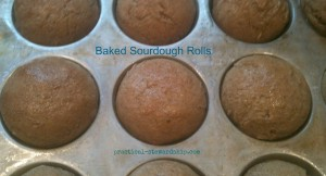 Baked Sourdough Rolls @ practical-stewardship.com