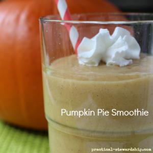 Pumpkin Pie Smoothie, Vegan
