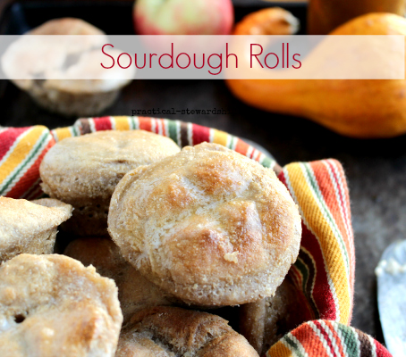 Sourdough Rolls, Vegan