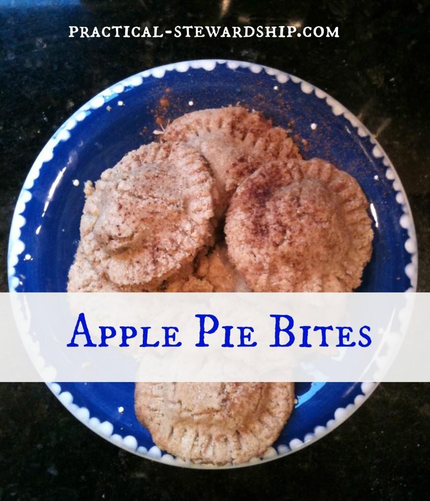 Apple Pie Bites @ practical-stewardship.com