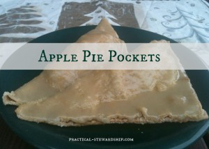 Apple Pie Pockets @practical-stewardship.com