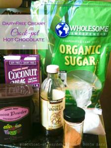Dairy-free Creamy Crock-pot Hot Chocolate