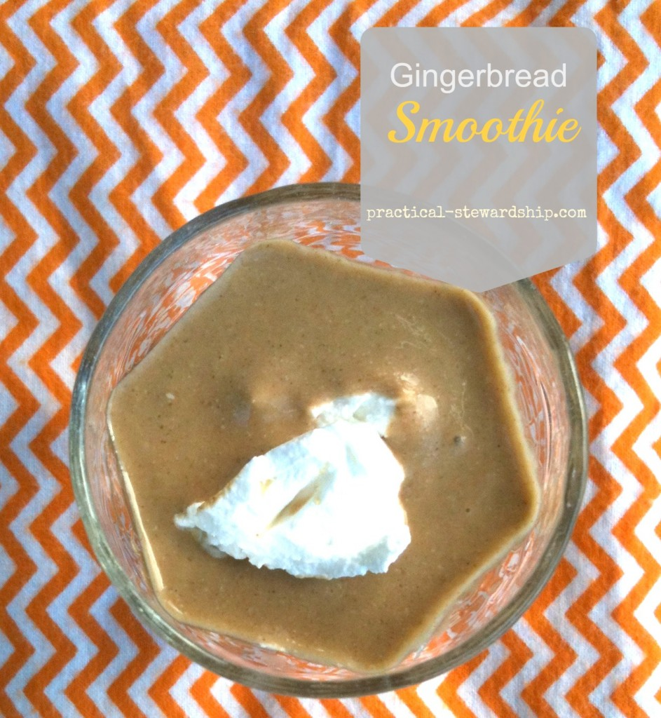 Gingerbread Smoothies @ practical-stewardship.com