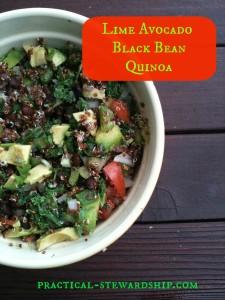 Lime Avocado Black Bean Quinoa