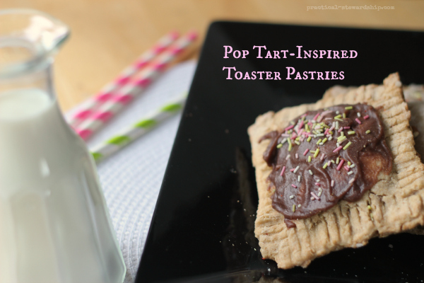 5 Ingredient Pop Tart-Inspired Toaster Pastries