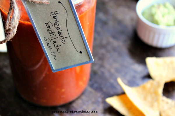 Homemade Enchilada Sauce with Chips