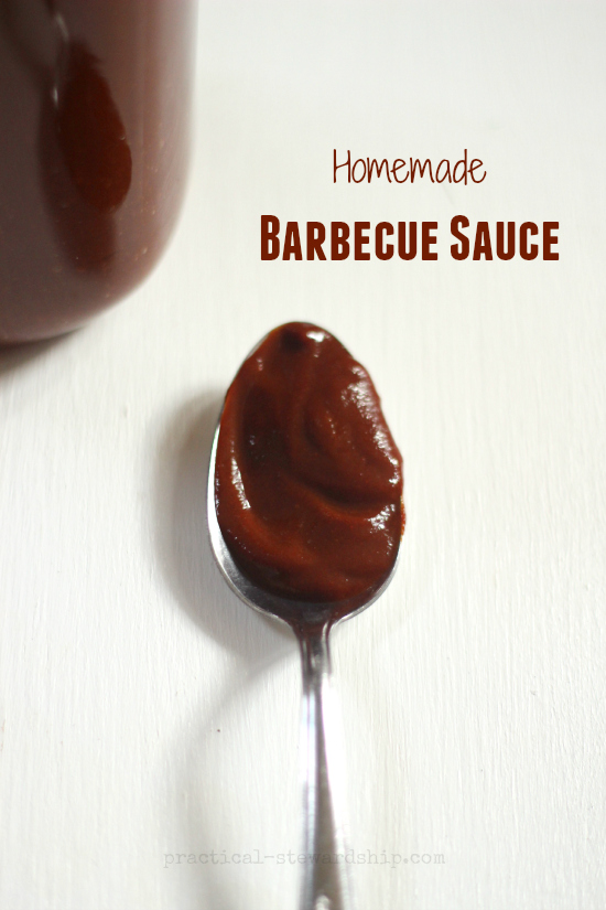 Homemade Barbecue Sauce Spoonful