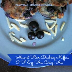 Gluten-Free Almond Flour Blueberry Muffins Dairy-Free, Egg-Free