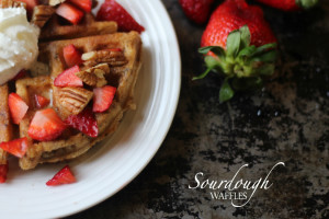 Sourdough Waffles with Pecans