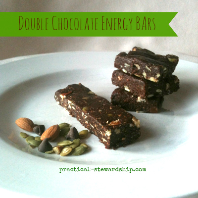 Double Chocolate Energy Date Bars, G-F, D-F