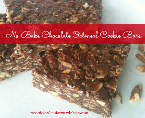 No Bake Chocolate Oatmeal Cookie Bars, Vegan, G-F, Dairy-Free