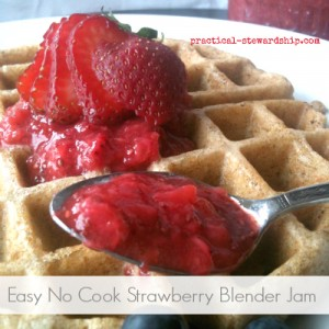 Easy No Cook Strawberry Blender Jam