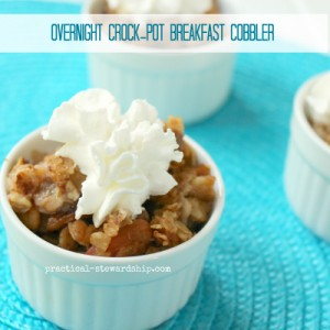 Overnight wthe Crock-pot Breakfast Cobbler