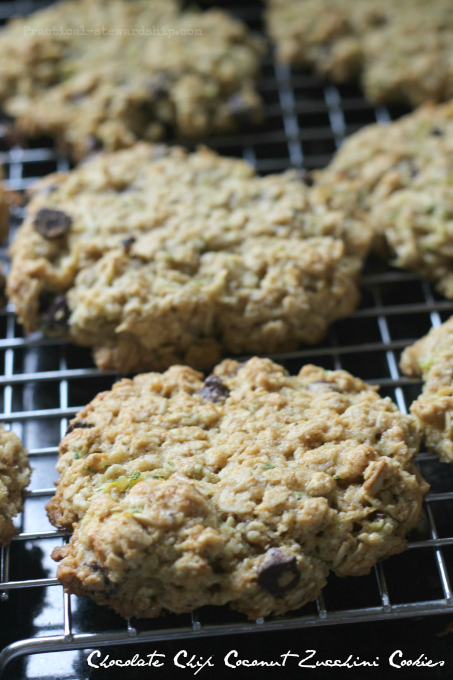 Chocolate Chip Coconut Zucchini Breakfast Cookies