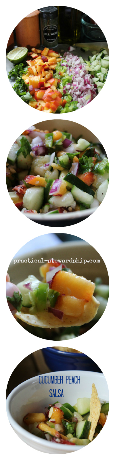 Cucumber Peach Salsa