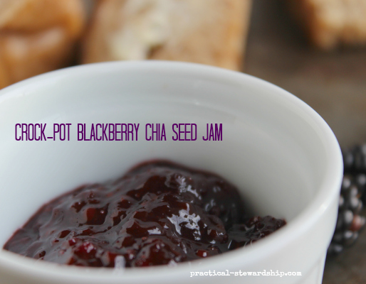Crock-pot Blackberry Jam on Bread