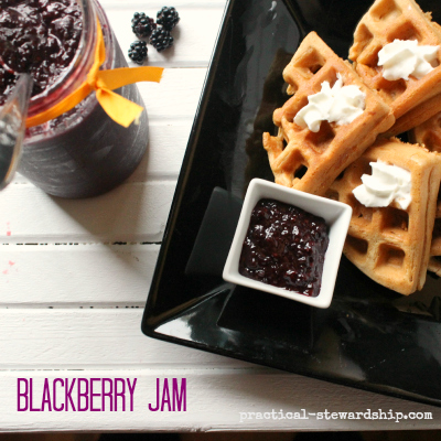 Blackberry Jam with Waffles