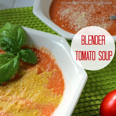 Blender Tomato Soup, V