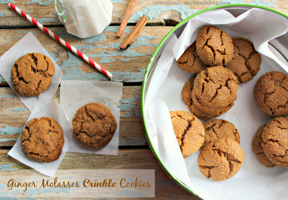 Molasses Ginger Crinkle Cookies, Egg-free, dairy-free