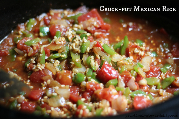Crock pot mexican rice or spanish rice practical stewardship crock pot mexican recipe forumfinder Images