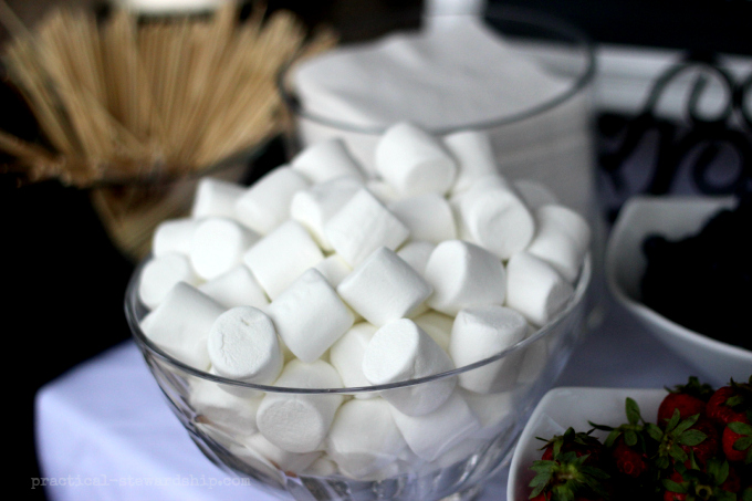 Marshmallows and Chocolate Fountain