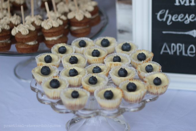 Mini Cheesecakes Topped with Blueberries