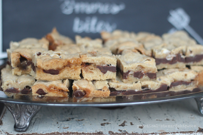 S'mores Bars and Dessert Bar