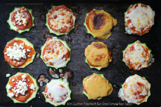 Mini Zucchini Pizzas with Sun Dried Tomato Basil Sauce
