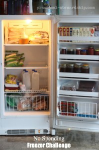 No Spending Freezer Challenge