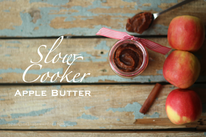 Slow Cooker Apple Butter with Apples