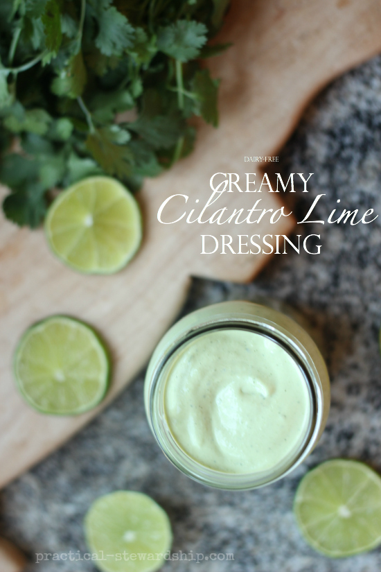 Dairy-free Creamy Cilantro Lime Dressing
