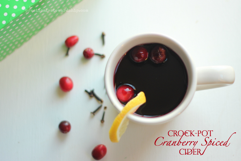 Crock-pot Cranberry Spiced Cider