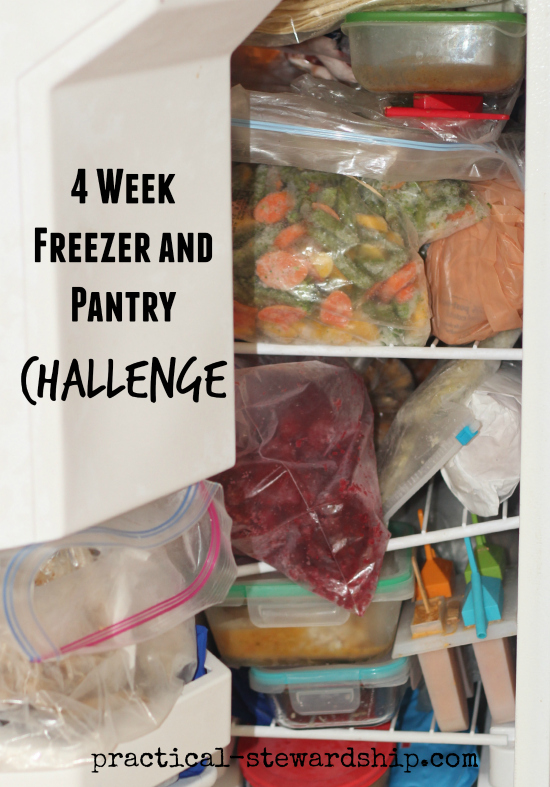 Shop Out of the Freezer and Pantry-No Spending Challenge
