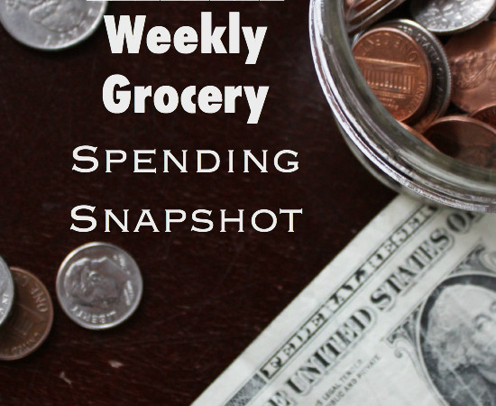 Real Numbers: Weekly Grocery Spending Snapshot