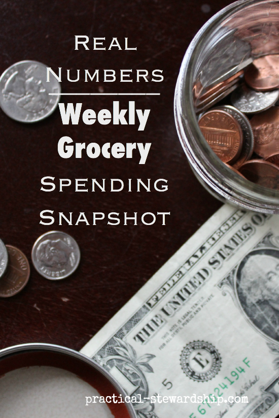 Real Numbers Weekly Grocery Spending Snapshot
