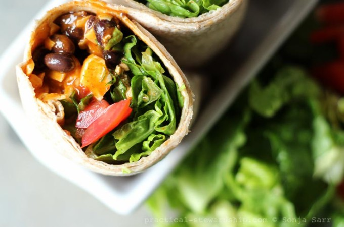 Enchilada Wraps Meal On-the-Go