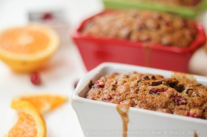 Dairy-free Cranberry Orange Bread